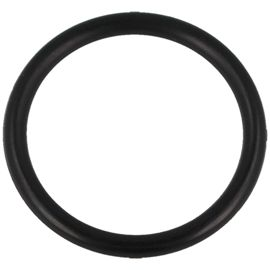 O-Ring 22*2,5 do pompki PCP Hatsan (18)